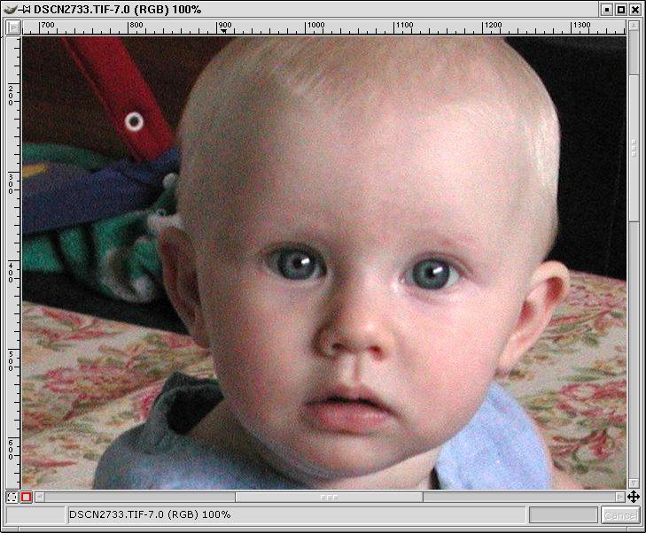 example1-original-zoomed100.jpg