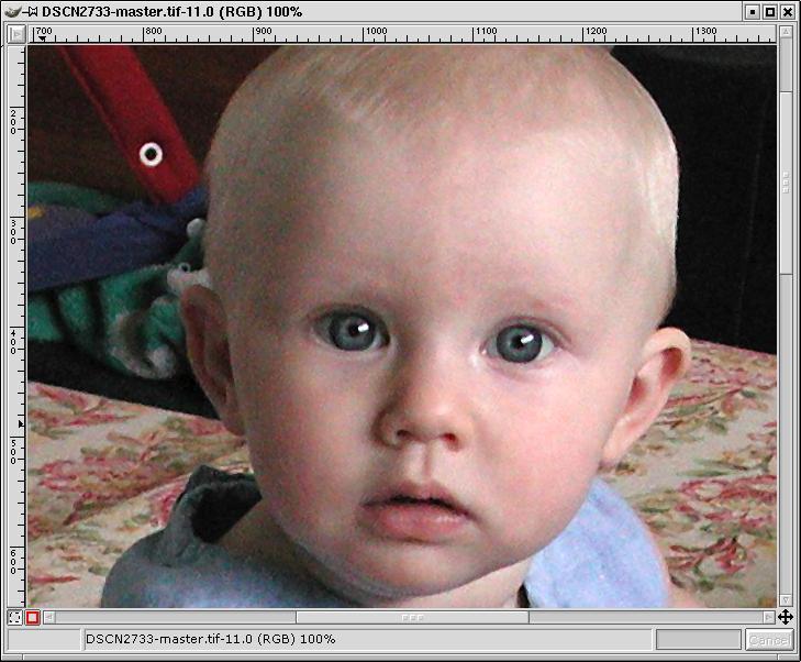 example1-smartsharp-zoomed100.jpg