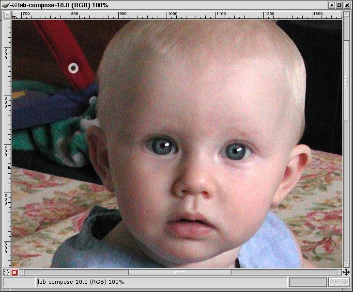 example1-warpsharp-luminosityonly-zoomed100.jpg